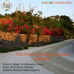 The Sound of Taketomi Island-OKINAWA unahq4006